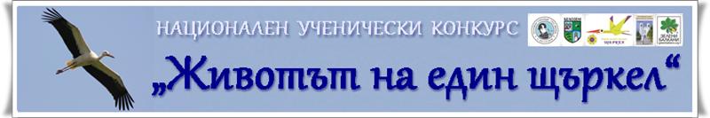 2 web banner